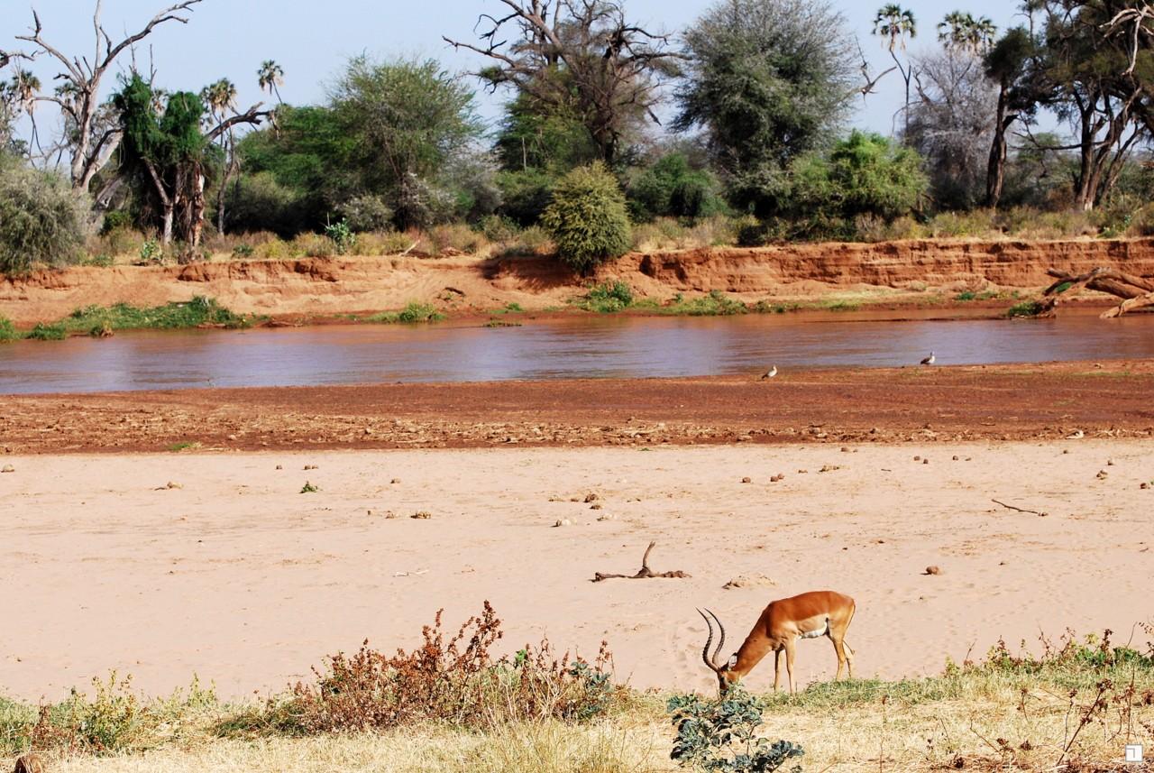 1-KENYA_2008-032