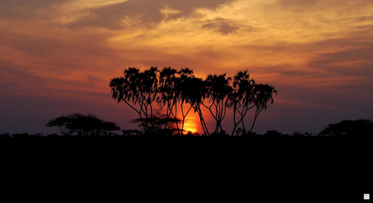 1-KENYA_2008-059