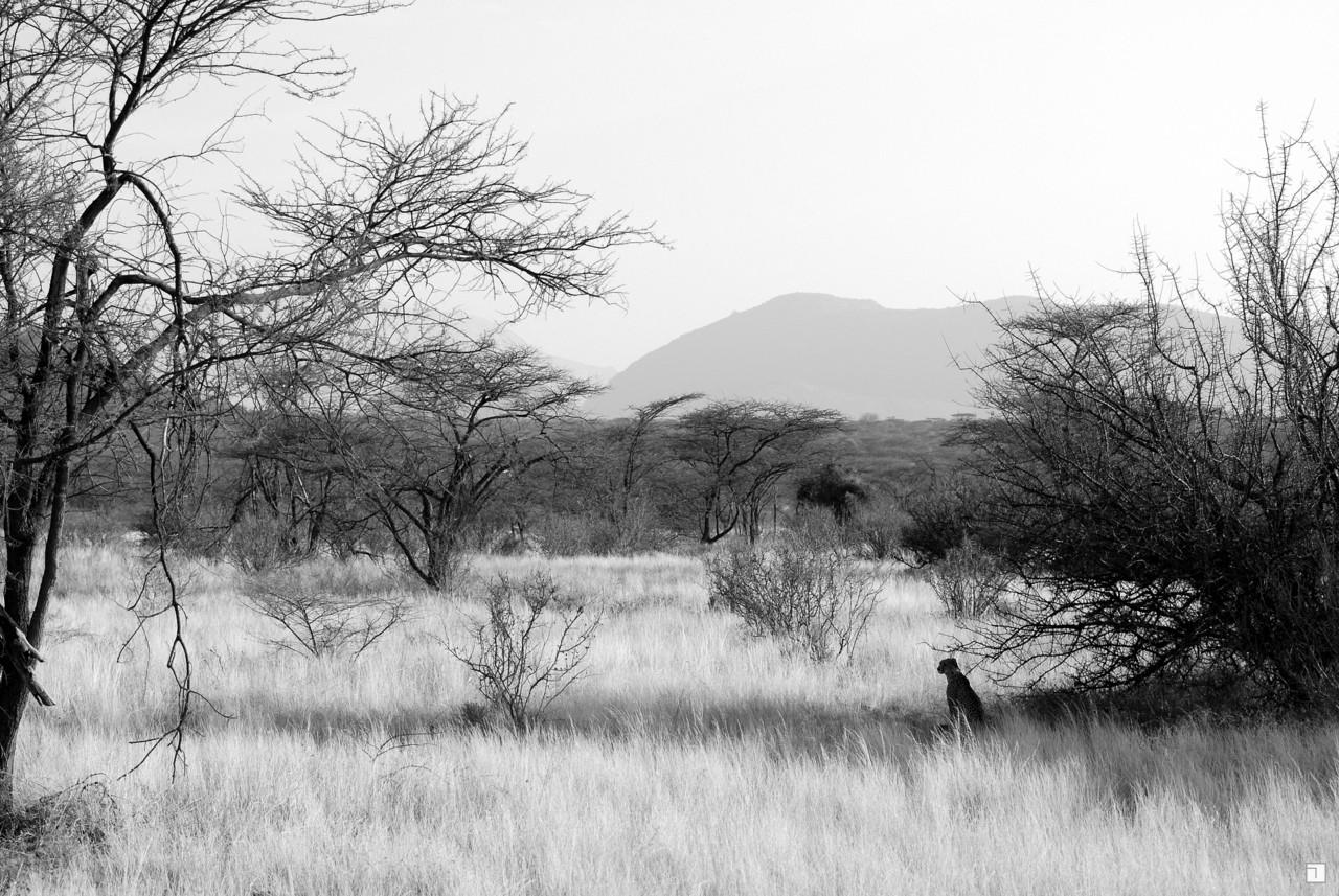 1-KENYA_2008-070