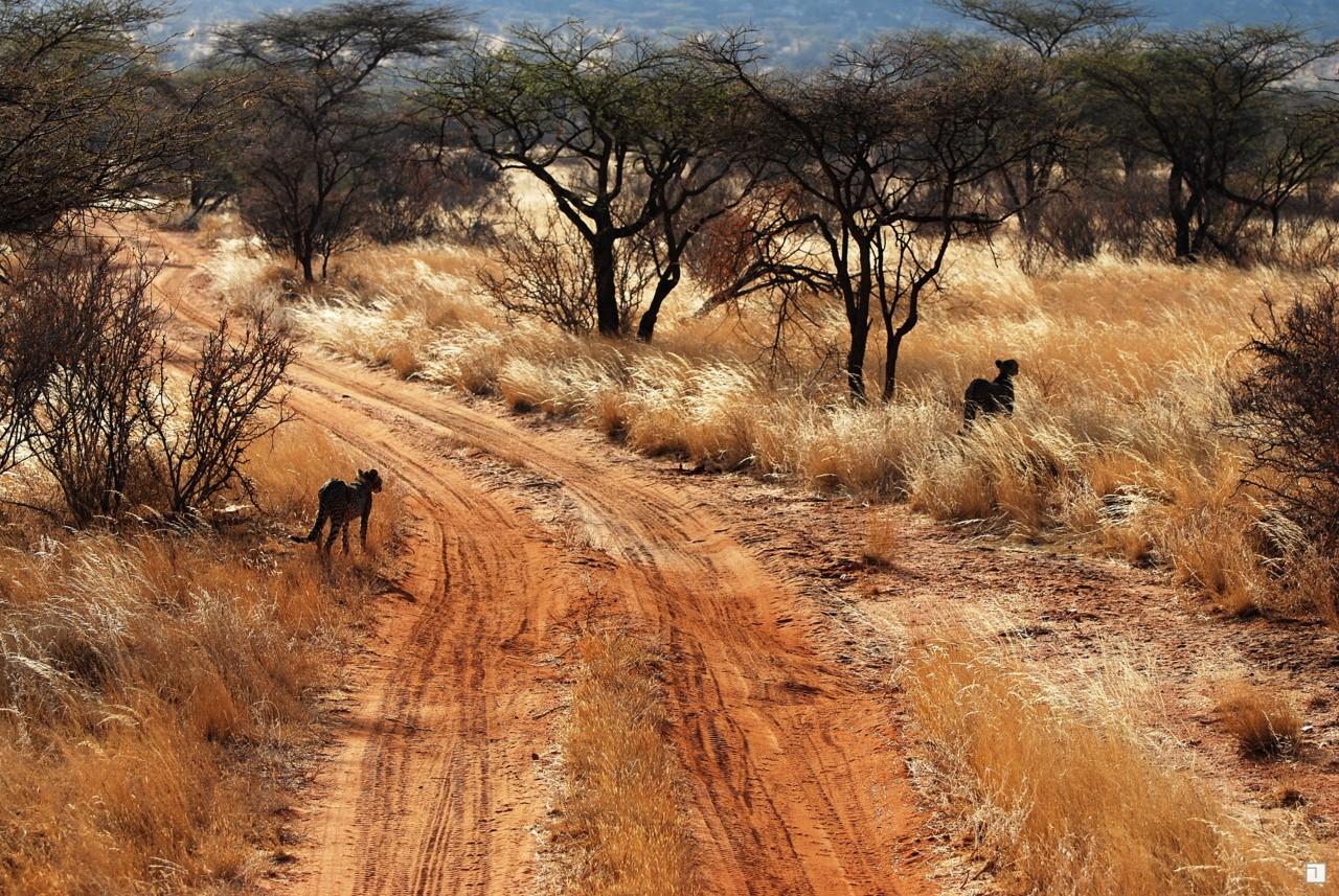 1-KENYA_2008-077