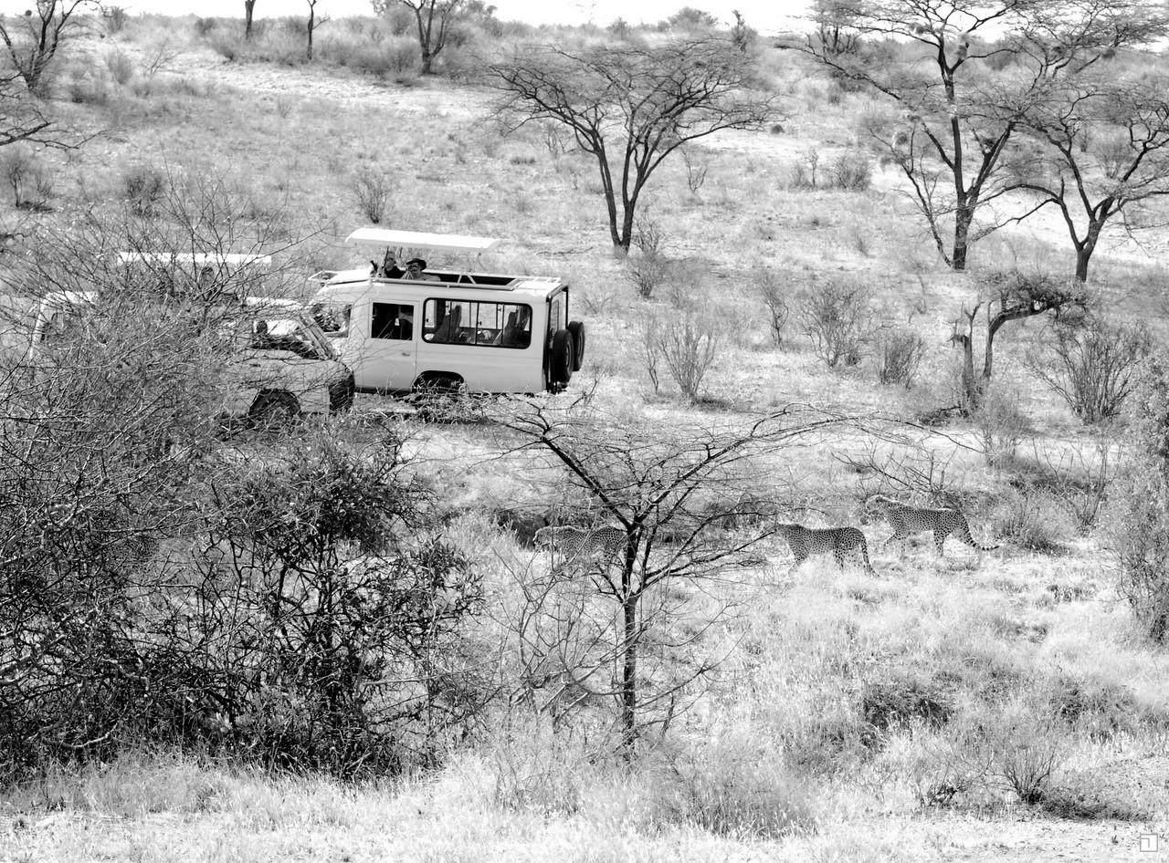 1-KENYA_2008-183