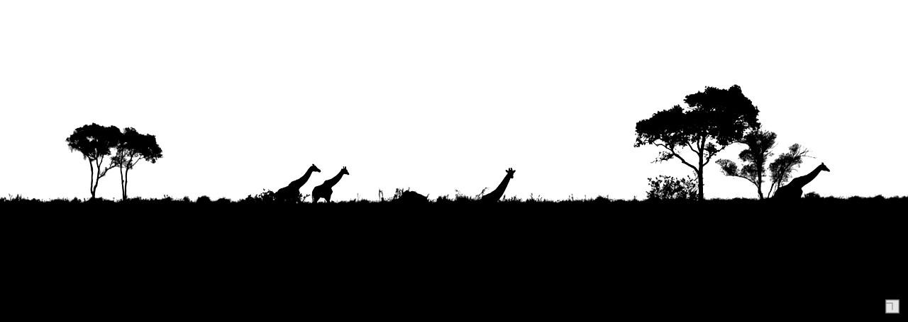 1-KENYA_2008-337