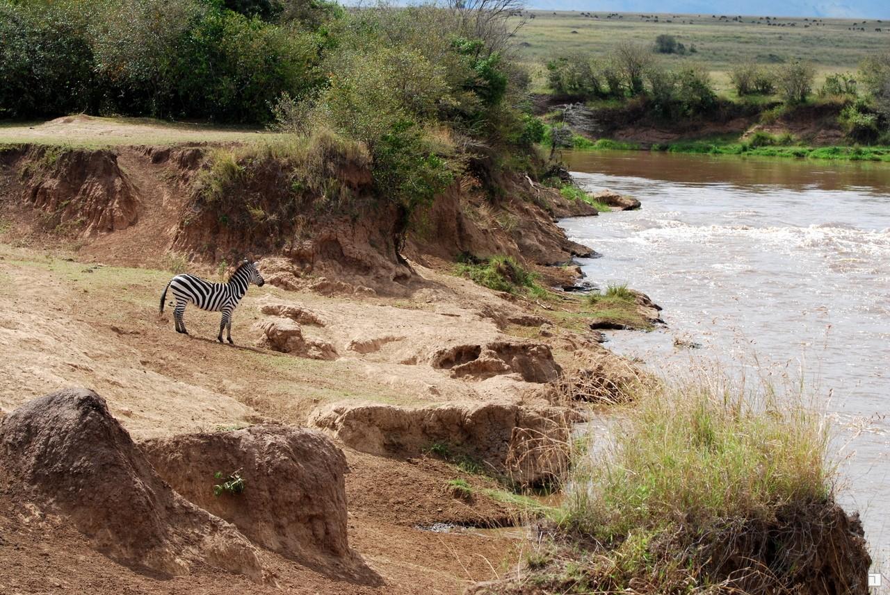 1-KENYA_2008-415